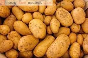 calories de la pomme de terre