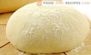 Come conservare la pasta lievitata
